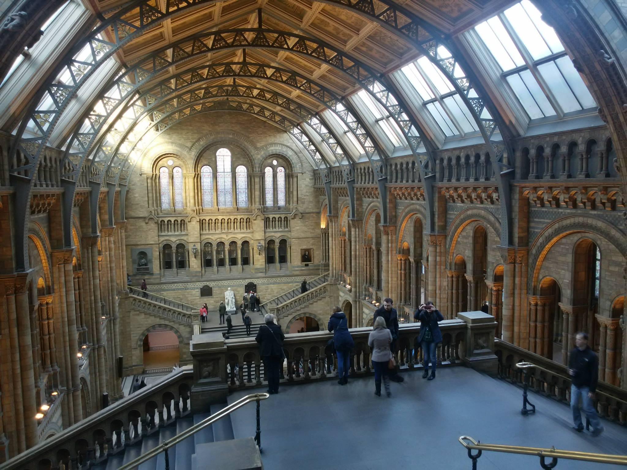 Natural History Museum - wnętrze